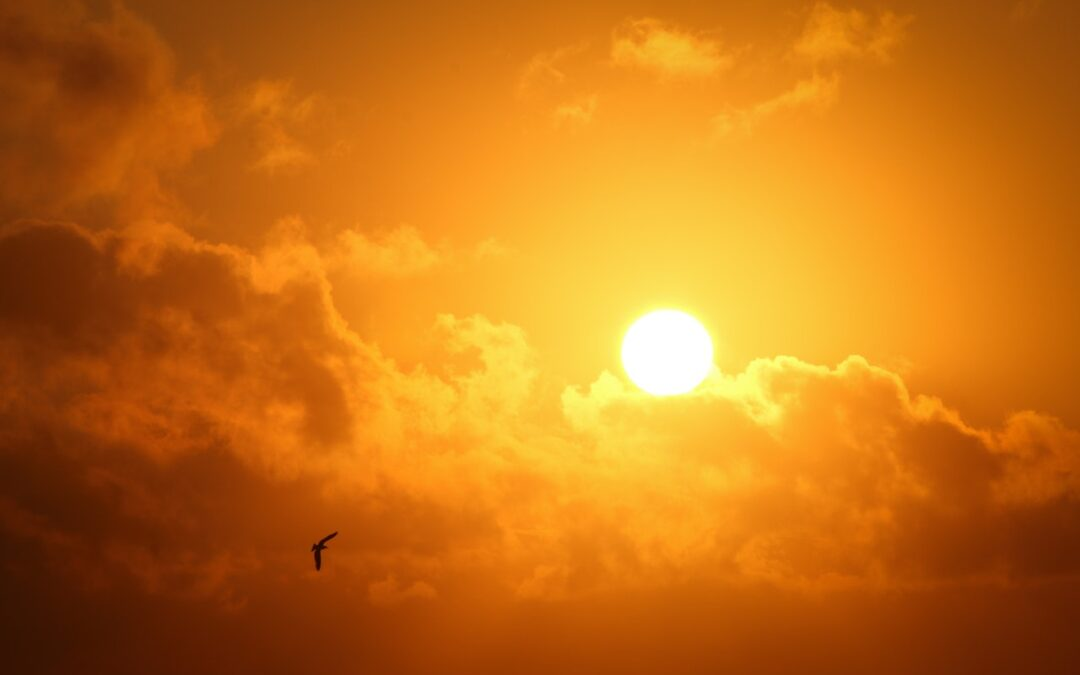 4 Ways To Harness The Power Of The Sun